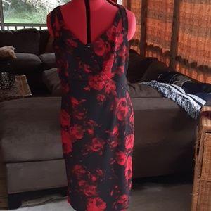 Pretty rose dress